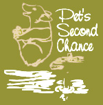 Pet's Second Chance